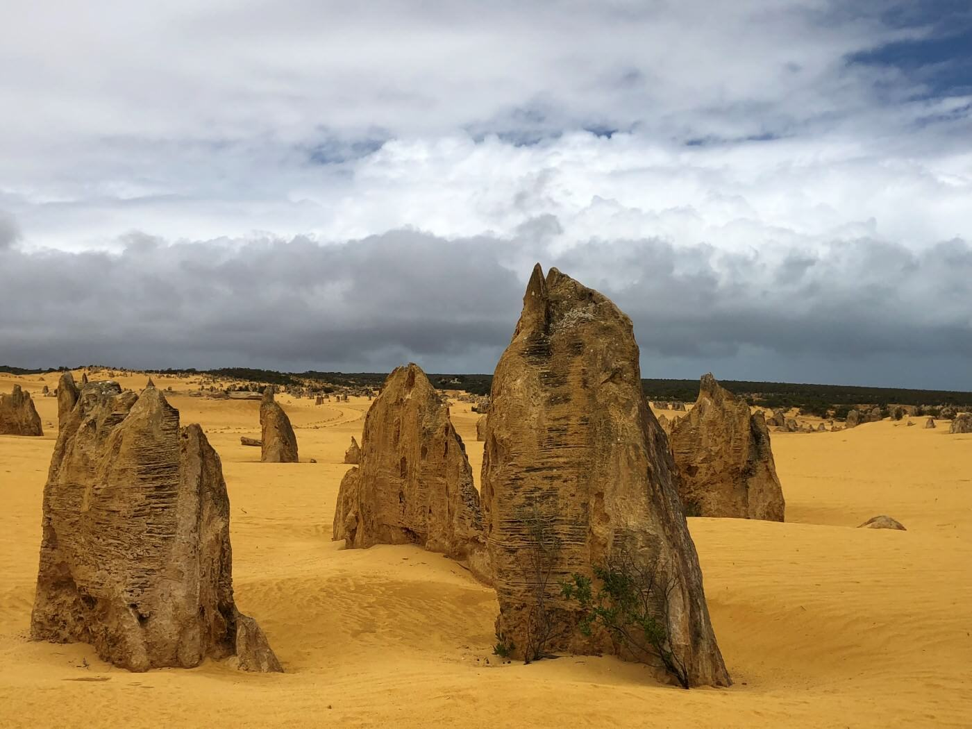 pinnacles-day-tours-luxury-outback-tours-10
