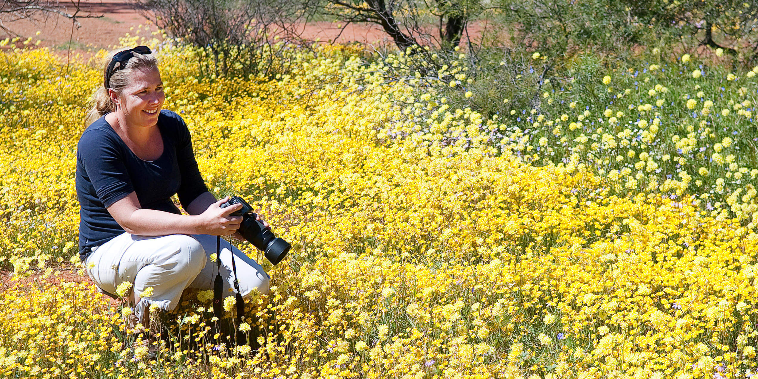 Outback and Station Wildflower Tour